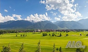 Земеделска земя 1484 кв.м Не е посочено Land 1484 sq. m. Not specified | Agricultural land, Orchards, Vineyards, Forests | t. Bansko